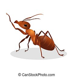 Cartoon realistic ant isolated on white. One leg raised up -...