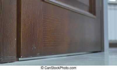 brown door open and close.