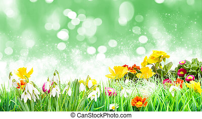 Easter, Flower Meadow in front of green
