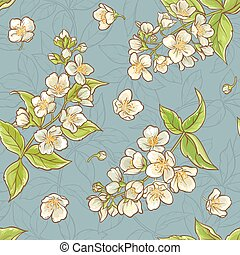 jasmine seamless pattern - jasmine flowers color vector...