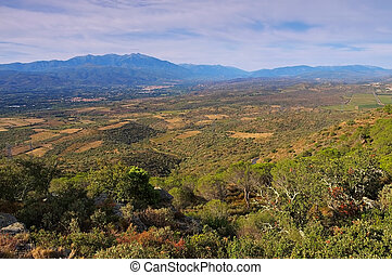 Corbieres landscape in southern France
