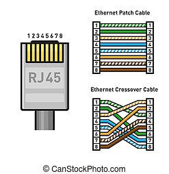 Ethernet Connector Pinout Color Code. Straight and Crossover RJ45 Connect. Vector