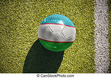 football ball with the national flag of uzbekistan lies on...