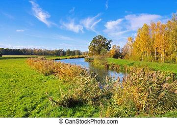 Spree Forest in fall, Brandenburg