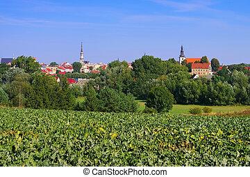 stad,  Frankenstein, Polen,  silesia