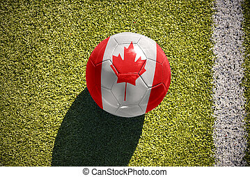 football ball with the national flag of canada lies on the...