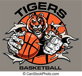 tigers basketball player ripping through ball for school,...