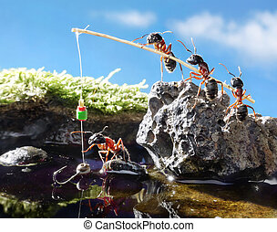 team of ants fishing with rod