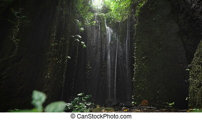Mysterious waterfall, located in a hidden place of the eyes, lit by sunlight from above. Jets waterfall fall to the bottom of the growing plants that move because of falling water on them