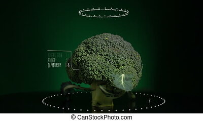 Infographic of Broccoli with vitamins, microelements minerals. Energy, calorie and component