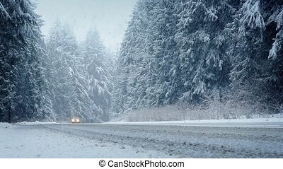 Cars Drive Through Forest In Snowstorm - Moving shot of cars...