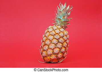 ananas on red background - ananas