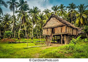 Bamboo house in Palembe - Photo of large house made of straw...