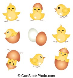 Vector set easter chicks - Vector set with beautiful easter...