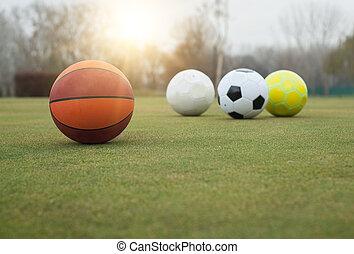 Various sports balls on grass field