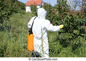 Pesticide spraying. Pest management. - Man spraying toxic...
