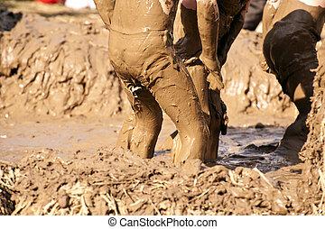 Mud Bath - Close up of a mud bath