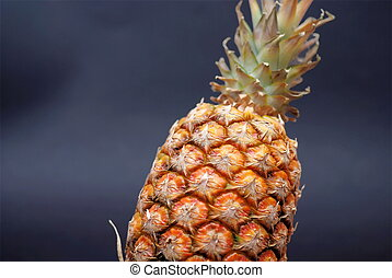 ananas on black background - ananas