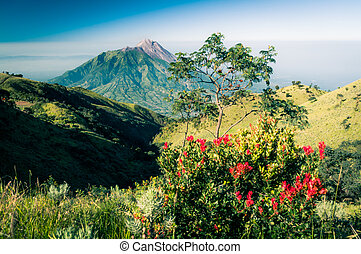 Photo of dormant stratovolcano - Photo of Mt. Merbabu,...