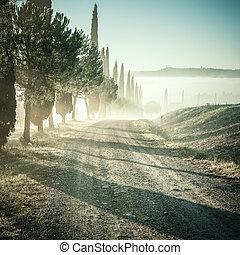 Vintage Landscape with Cypress and Road - Vintage landscape...