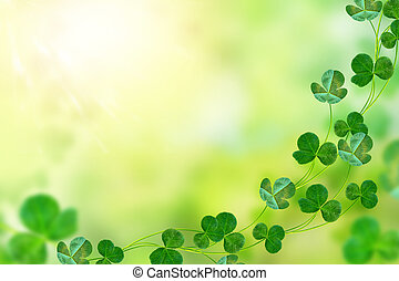 Green clover leaves on a background summer landscape