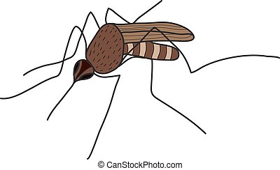 Cartoon color mosquito isolated on white background. Vector illustration