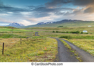 Icelandic grassland and mountains