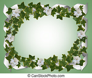 Ivy border with gardenias - Image and illustration...