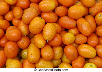 Fresh orange cumquat citrus fruits - Fresh ripe orange...