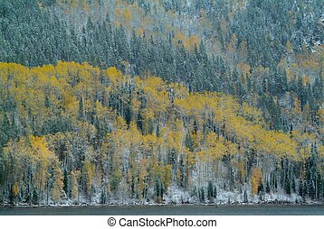Mountain peaks with autumn forest and lake