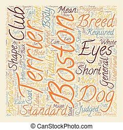 Boston Terrier The Standard and Does it Matter text background wordcloud concept