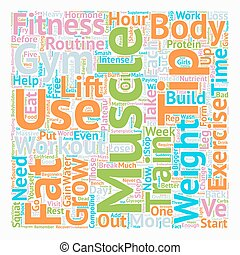 Build Muscles And Smash Plateau For Beginners text...