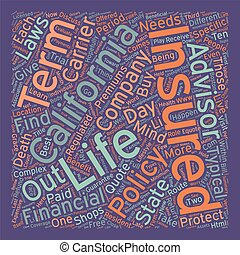 California Term Life Insurance text background wordcloud concept