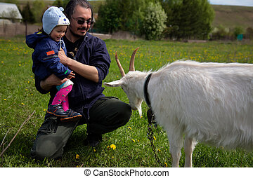 Little baby with middle age father near goat - Happy little...