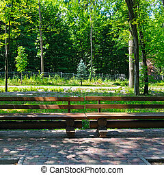 benches for relaxing in the cozy city park