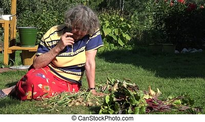 Senior country woman is sitting in vegetable garden and talk...