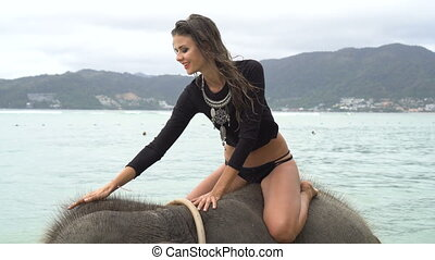 Young pretty blond woman on elephant in the sea - Young...