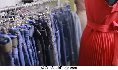 Selection of women's clothing in the store - women choose...