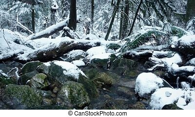 Moving Past River In Snowy Forest - Tracking shot moving...