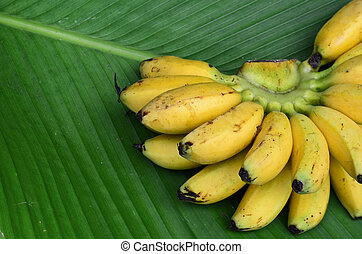 Bunch of banana on leaf background