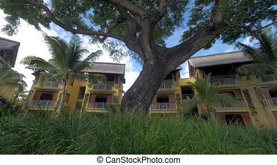 Hotels and trees on tropical resort - Tilt shot of spreading...