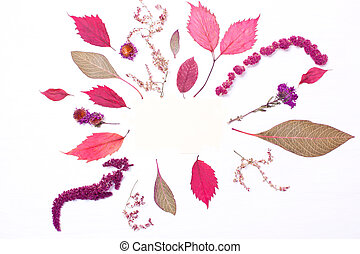 Frame of red leaves and flowers. Autumn composition.
