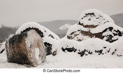 Haystacks in the snow at winter