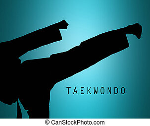 The silhouette of Man training karate - The silhouette of...