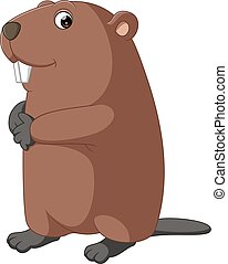 Cartoon beaver - illustration of cute  beaver Cartoon