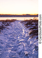 Scene with trail on snow  sunset