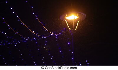 Night Winter Park with lanterns and garlands.