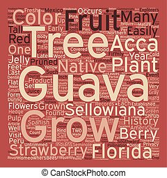 History Of The Guava text background wordcloud concept