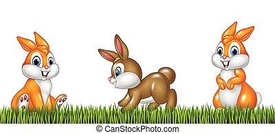Cartoon rabbits on grass background - Vector illustration of...