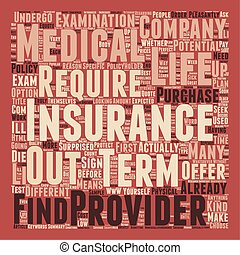 How Does No Medical Term Life Insurance Work text background wordcloud concept